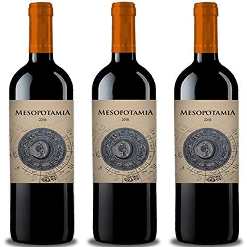 Vino tinto MESOPOTAMIA Roble 2018 (3 bot x 75 cl.) - 100% Tinta de Toro - Mejor vino de Toro roble de Abadia de Aribayos Vinos y Cervezas