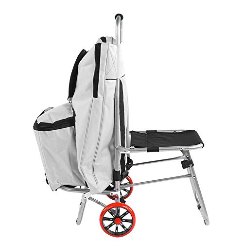 fo sa Folding Painting Trolley with Folding Chair, Multifunctional Portable Drawing Board Folding Chair Sketch Bag Painting Trolley Art Supplies(Silver)