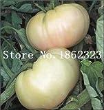 Pinkdose 100 teile/beutel Rainbow Tomato Bonsai, seltene Tomatenpflanze, Bonsai Bio-Gemüse & amp; Obstbonsai, Topfpflanze für Haus & Garten: 8