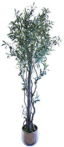 Maia Shop Olivo Troncos Naturales, Elaborados con los Mejores Materiales, Ideal para Decoración de hogar, Árbol, Planta Artificial (180 cm)