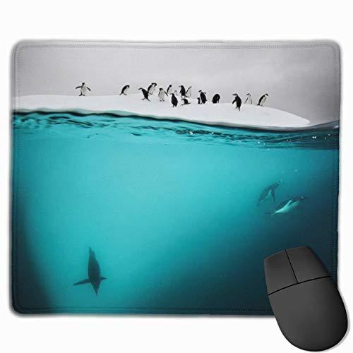 Pinguin auf Eis Burg rutschfeste personalisierte Designs Gaming Mouse Pad Schwarzes Stoff Rechteck Mousepad Art Naturkautschuk Mausmatte mit genähten Kanten