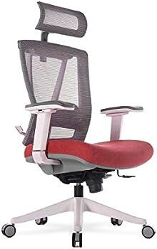 Autonomous Premium 2021 Ergonomic Adjustable Seat Office Chair