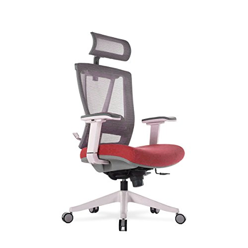 Autonomous Premium 2021 Ergonomic Office Chair: Lumbar Support, Adjustable Seat, Headrest, and Armrests, Executive Swivel, Responsive Mesh Back, Thick Cushion, 350 lbs Capacity, Medium, Red - Grey