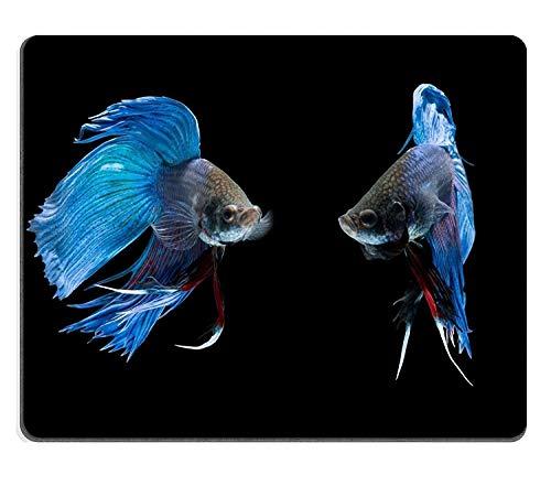 Mauspad mauspads Gaming Mousepad Betta Fische auf schwarzem Hintergrund PM0928