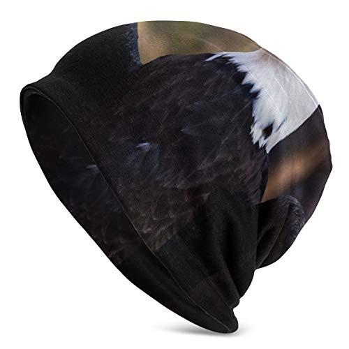Multifunktionale Beanie-Mütze, Strickmütze, modisch, Outdoor, Slouchy, Beanie, Totenkopf, Kopfbedeckung, Kappe, Adler, Vogelhecke, Kappe für Männer und Frauen