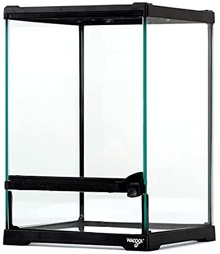 Repti-Zoo Terrarium 21x21x30 cm - Glasterrarium für Reptilien, Amphibien, Spinnentiere und Insekten
