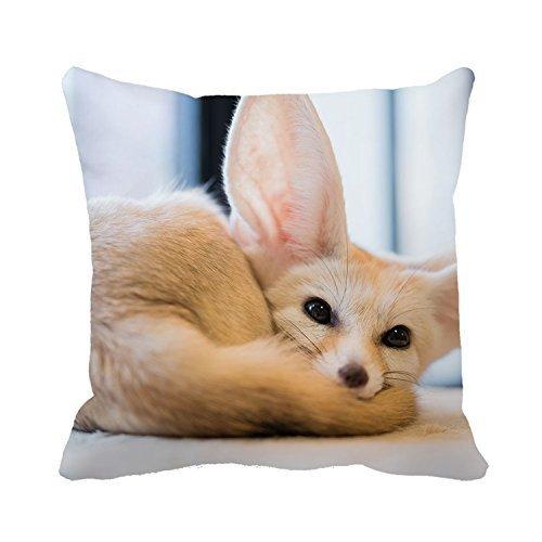 Warrantyll Taie d'oreiller Big Eyes Fox Throw Taie d'oreiller Maison Canapé Coussin décoratif, Coton, #Color 1, 16*16