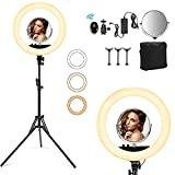 18'' Ring Light with Tripod Stand 78''& 3 Phone Holders, Dimmable LED Camera Ringlight for Live Stream/Makeup/YouTube Video/Photography/TikTok, Compatible with Phones, Cameras and Webcams