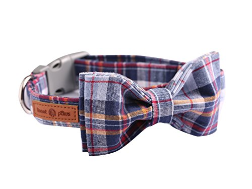 Lionet Paws Dog and Cat Collar with Bowtie Grid CollarPlastic Buckle LightAdjustable Collars for...