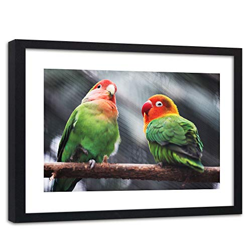 Feeby Cuadro con Marco XXL Loros Arte Moderno Pájaros Naturaleza Multi 120x80 cm