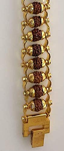 Red Carpet Hook Style Small Rudraksha Beads Bracelet Wrist Bracelet Golden Chain Style Rudraksha Bracelet