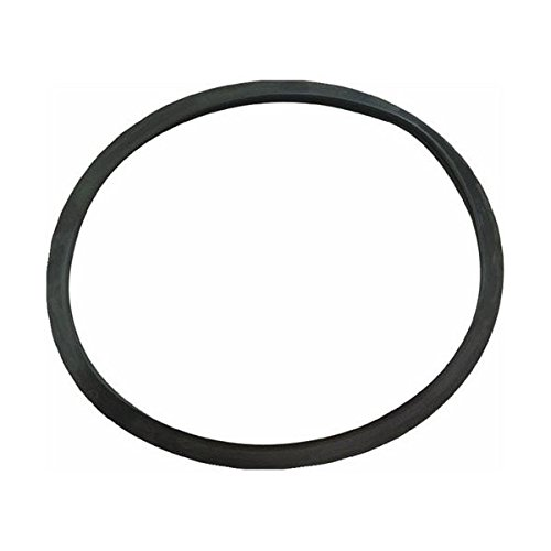 Eastwood O Ring Gasket for Dual Soda Abrasive Blaster Replacement Fill Cap