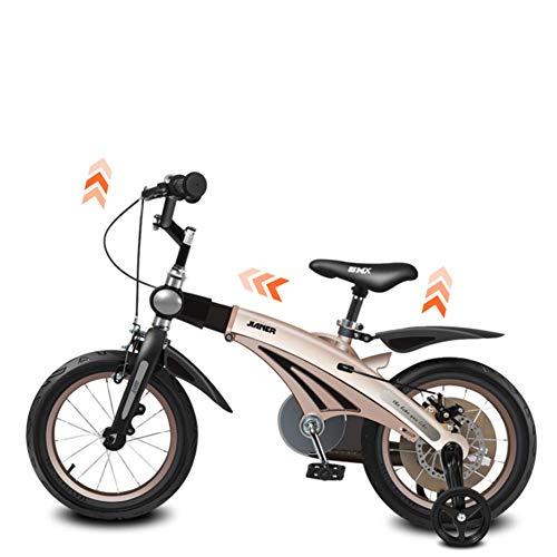 carro bici fabricante YQ