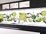 KLINOO - Panel de pared para cocina en aspecto de lima, protección contra salpicaduras, protección de pared, todas las superficies (juntas ocultas), ampliable, olor neutro 136 cm x 48 cm (limeta)