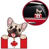Biomar Labs® 1 x Vinyl Aufkleber Autoaufkleber Sticker Dog Hund Französische Bulldogge French Bulldog mit Kanada Kanadische Canada Flagge B 234