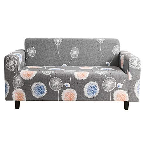 XHHXPY Funda para Sofá Elasticas de 1 2 3 4 Plazas Impresión Poliéster Suave Antideslizante Protector Cubierta de Muebles con Cuerda de Fijación,Style b,2 Seater