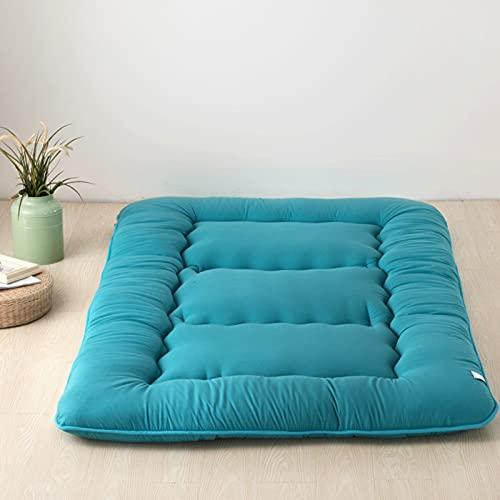 PWQHT Plegable 13cm Tatami Piso Mat/Pad de Moda Cómodo Futón para Dormitorio/casa Siesta Colchón futon Dormir Mat(Color: B,Size: 200x220cm)