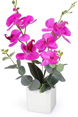 Yobansa Dekorative echte Berührung gefälschte Orchidee Bonsai künstliche Blumen mit Keramik Blumentöpfe Phalaenopsis Blumenarrangements für Home Decoration (Rose Red)