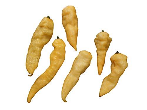 Bhut Jolokia Peach (Eine der schärfsten Chilis der Welt) 10 Samen **Seltenheit-Rarität**