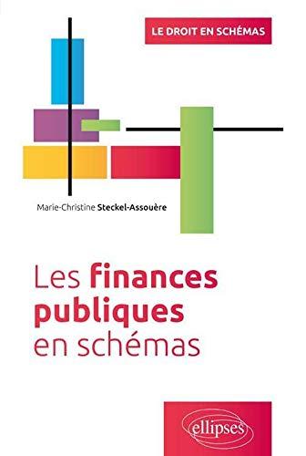 Les finances publiques en schémas (Le droit en schémas)