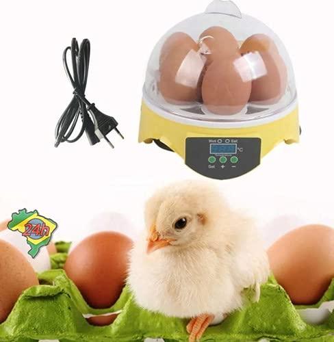 Incubadora De Ovos Display Digital 7 Unidades Chocadeira