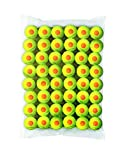 Wilson Starter Orange Tennis Ball - 48 Pack