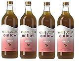 Kombucha Onflow - Té Kombucha Sabor a Manzana y Canela - Botella de 1 Litro - Bebida Vegana, Ecológica y Orgánica - Elimina Toxinas - Té Kombucha en Base a SCOBY - Elaborado en España