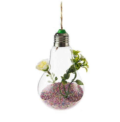 Gespout Mini Vase Verre Transparent Suspendu Decoration Design Salon Blanc Rond 2 Trous