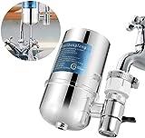 Filtro de agua para grifo TaiRi, sistema de filtración de agua de acero inoxidable, purificador de agua para reducir cloro/plomo, para grifos estándar