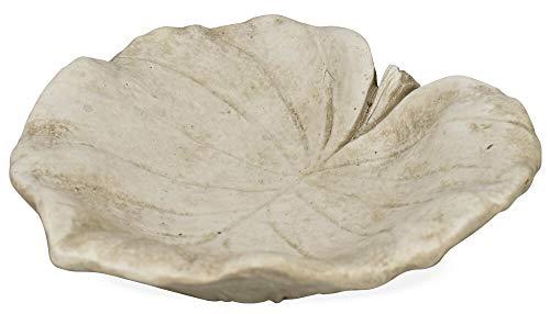 Matches21 Abreuvoir pour oiseaux en forme de feuille ronde Style ciment béton Mangeoire à oiseaux 1 pièce Ø 21,5 cm