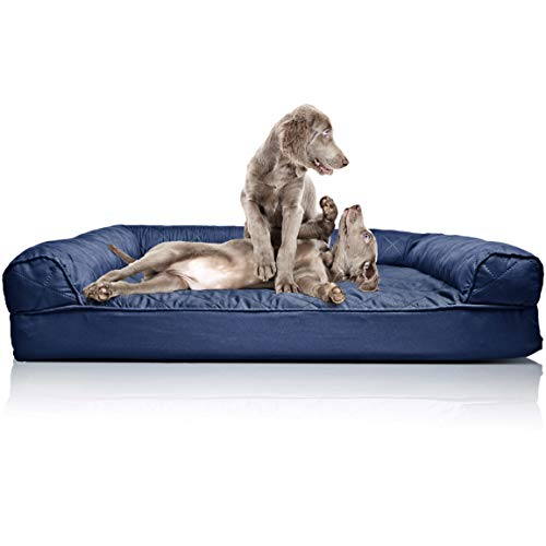Dog Bed for 2 Large Dogs