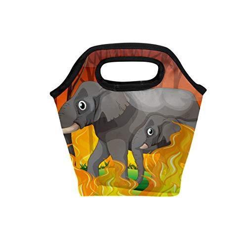 Lunch-Tasche Elefant rennt weg von Wildfire Geschenk Neopren isolierter Kühler Wärmer tragbare lustige Lunchbox Handtasche Reißverschluss Geschenk für Männer Frauen Erwachsene Kinder Jungen Mädchen