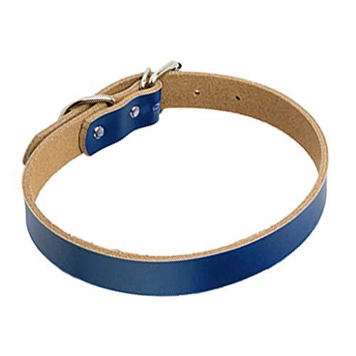 JIACUO Lain Echtes Hundelederhalsband für kleine mittelgroße Hunde Einfache Haustierhalskette