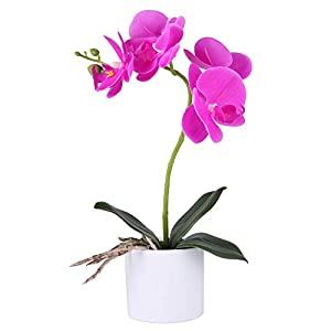 LUEUR Artificial Orchid Flower
