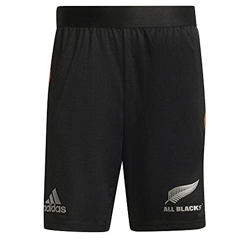 adidas AB Gym SHO Pantalone Corto, Nero, XL Uomo