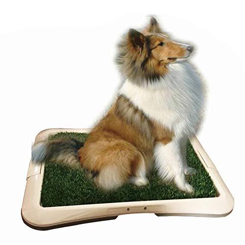 BPS Bandeja Sanitaria para Perros de Adecuado para Perra Adiestramiento Inodoro Interior para Perros Aseo Mascotas Plástico Color al Azar (Hierba: 64 x 48 x 4 cm) BPS-5704
