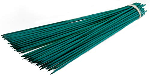 Novatool 200x Splittstäbe 30 cm x 3,5 mm I Grün I Pflanzstäbe Rankhilfe Bambus Stab Bambusstäbe Bambusstange Pflanzen Stütze Holzstab Plant Stakes