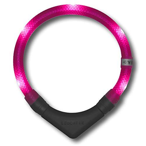 LEUCHTIE® Leuchthalsband Plus hotpink Größe 50 I LED Halsband für Hunde I 100 h Leuchtdauer I wasserdicht I enorm hell