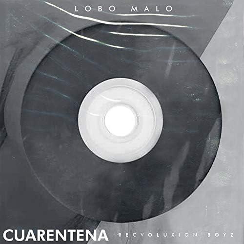 Lobo Malo & Recvoluxion Boyz