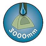 Coleman Weatherproof Instant Tourer Unisex Outdoor Dome Tent 16