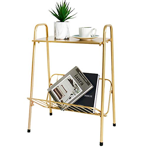 Tiita Gold Metal Side Table Two-Tier End-Table Magazine Storage Accent Table for Sofa, Bedroom,Living Room(Gold)