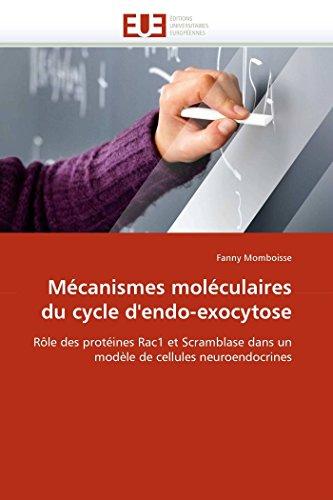 Mécanismes moléculaires du cycle d'endo-exocytose: Rôle des protéines Rac1 et Scramblase dans un modèle de cellules neuroendocrines (Omn.Univ.Europ.)