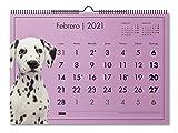 MIQUELRIUS - Calendario de Pared 2021 Perros - Español, A3 420 x 296 mm con espacio para escribir y apuntar, un diseño diferente cada mes