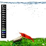 SunGrow Shrimp Stick-on Thermometer, 5.2 Inches, Stick-and-Go, 1 pc per Pack