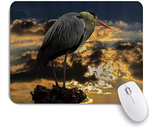 FAKAINU Gaming-Mauspad,Vogelreiher-Baumstumpf-Sonnenschein durch dicken dunklen Wolken-Sonnenuntergang,Rutschfest Verschleißfestes Und Haltbares Gummi,Mousepad Für Bürocomputer,9.5