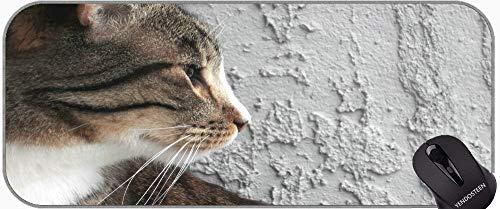 XXL Gaming Mouse Pad EXPATISURA Archivo, Cat Animal Anterior Laptop Ordenador...
