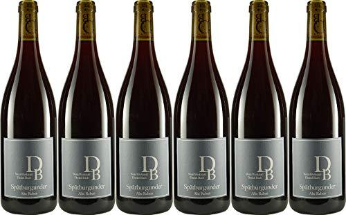 Wein-Werkstatt Daniel Bach Spätburgunder Alte Reben 2017 Trocken (6 x 0.75 l)