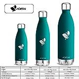 Aorin 500ml Trinkflasche (Blauer See) - 5