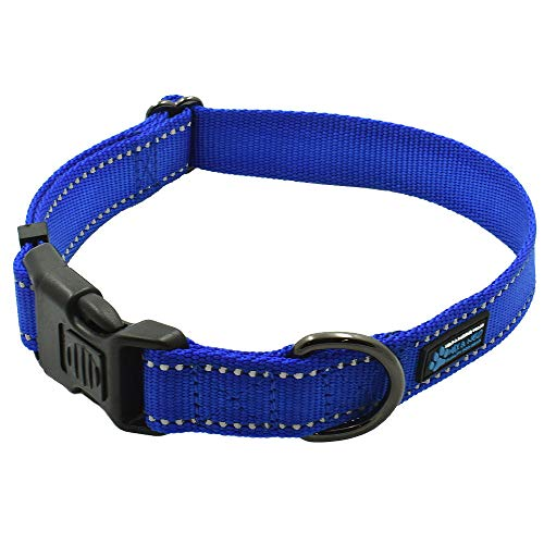 Max and Neo NEO Nylon Buckle Reflective Dog Collar - We Donate a Collar to a Dog Rescue for Every Collar Sold (Medium, Blue)