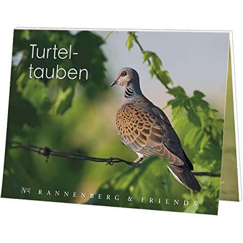 Postkartenbuch Turteltauben Vogel des Jahres 2020 15 Postkarten Rannenberg & Friends